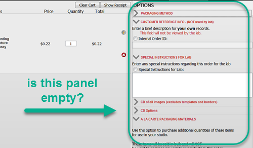 Options Panel in Shopping Cart.png